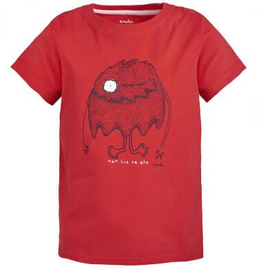 Endo - T-shirt dla chłopca 3-8 lat C81G032_1