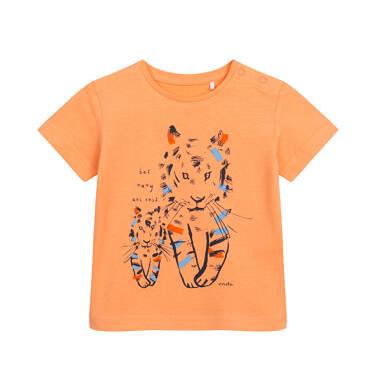 T-shirt z krótkim rękawem dla dziecka do 2 lat, z tygrysami, pomarańczowy N05G069_1