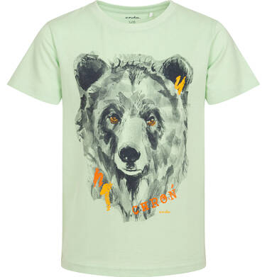 Endo - T-shirt z krótkim rękawem dla chłopca, z niedźwiedziem, zielony, 9-13 lat C06G185_1 88