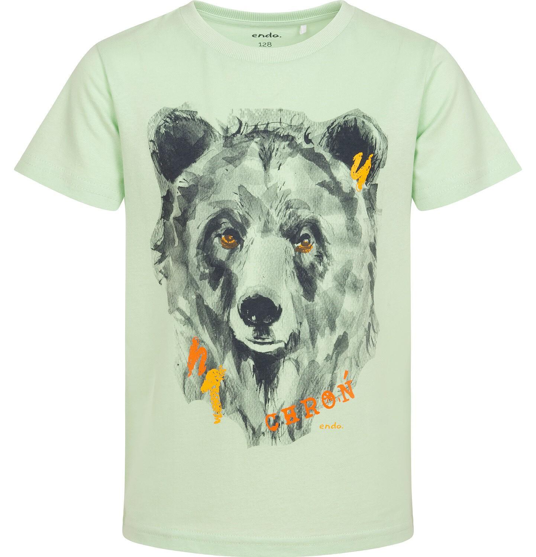 Endo - T-shirt z krótkim rękawem dla chłopca, z niedźwiedziem, zielony, 2-8 lat C06G504_1