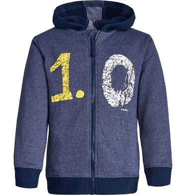 """Endo - """"Mistrz"""" Bluza z kapturem rozpinana dla chłopca 3-8 lat C82C005_1"""