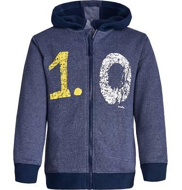 """Endo - """"Mistrz"""" Bluza z kapturem rozpinana dla chłopca 3-8 lat C82C505_1"""
