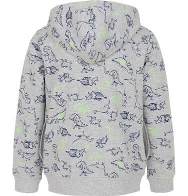 Endo - Bluza rozpinana z kapturem dla chłopca 3-8 lat C91C019_2