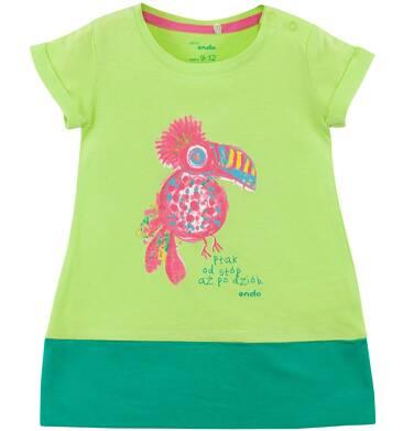 Endo - Dwukolorowa sukienka dla niemowlaka N61H008_1