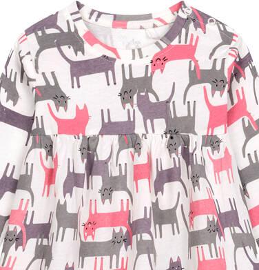 Endo - Sukienka dla dziecka do 2 lat, deseń w koty N04H017_2 23