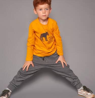 Endo - Spodnie dresowe dla chłopca 3-8 lat C82K019_1