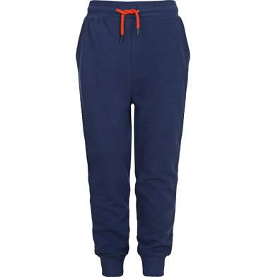 Endo - Spodnie dresowe dla chłopca 3-8 lat C82K022_1