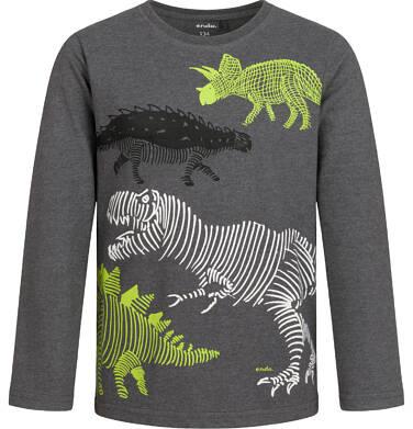 Endo - T-shirt dla chłopca z długim rękawem, z dinozaurem, szary, 9-13 lat C04G150_1 91