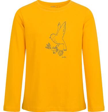 Bluzka z długim rękawem dla dziewczynki, żółta, 9-13 lat D04G124_2
