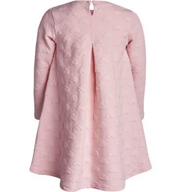 Endo - Sukienka z długim rękawem dla dziewczynki 3-8 lat D82H006_1