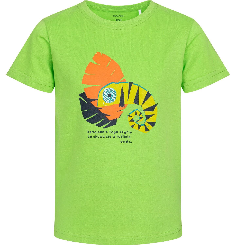 Endo - T-shirt z krótkim rękawem dla chłopca, z kameleonem, zielony, 9-13 lat C05G110_2