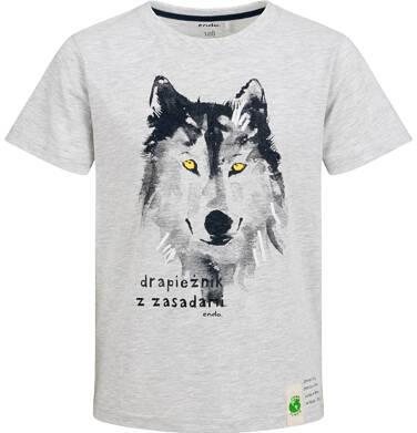 Endo - T-shirt z krótkim rękawem dla chłopca, z wilkiem, szary, 9-13  lat C03G618_1 1