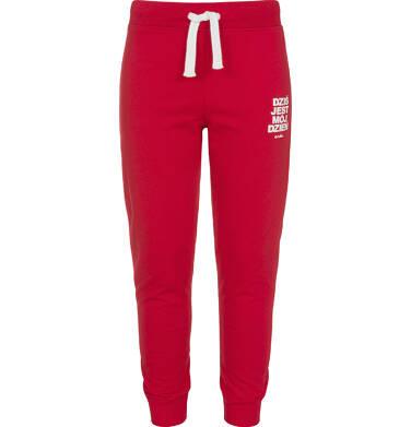 Endo - Spodnie dresowe dla chłopca, czerwone, 3-8 lat C92K009_3