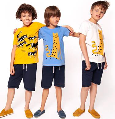 Endo - Krótkie spodenki dresowe dla chłopca 3-8 lat C91K023_1
