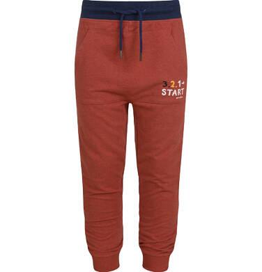 Endo - Spodnie z obniżonym krokiem dla chłopca, ceglane, 2-8 lat C03K046_1 84