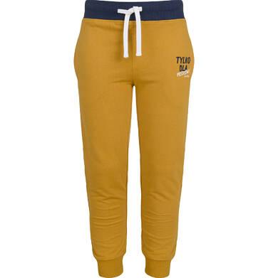 Endo - Spodnie dresowe dla chłopca, brązowe, 9-13 lat C03K545_3 30