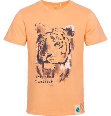 Endo - T-shirt męski z tygrysem, pomarańczowy Q05G007_2 8