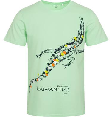 Endo - T-shirt męski z kajmanem, zielony Q05G010_2 14