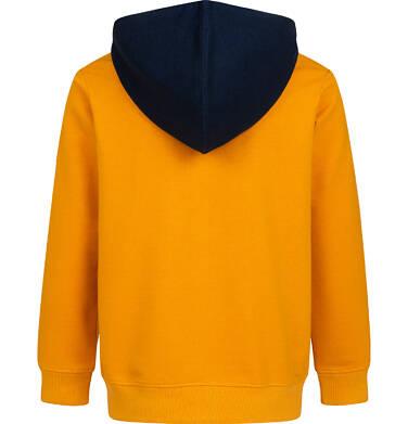 Endo - Rozpinana bluza z kapturem dla chłopca, z lwem, pomarańczowa, 2-8 lat C05C023_1,3