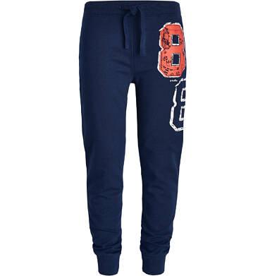 Endo - Spodnie dresowe dla chłopca 3-8 lat C81K016_2