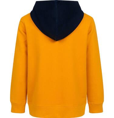 Endo - Rozpinana bluza z kapturem dla chłopca, z lwem, pomarańczowa, 9-13 lat C05C025_1 1