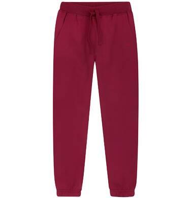 Ciepłe spodnie dresowe dla chłopca 9-13 lat C72K505_2