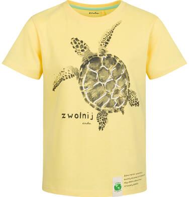 Endo - T-shirt z krótkim rękawem dla chłopca, z żółtwiem, żółty, 9-13 lat C03G598_1