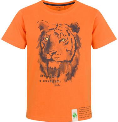 Endo - T-shirt z krótkim rękawem dla chłopca, z tygrysem, pomarańczowy, 9-13 lat C03G620_2 33