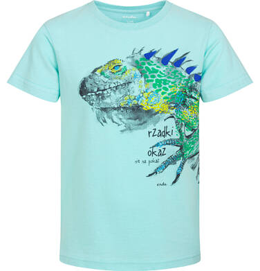 Endo - T-shirt z krótkim rękawem dla chłopca, z legwanem, niebieski, 9-13 lat C06G091_1 107