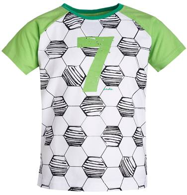 Endo - T-shirt dla chłopca 9- 13 lat C81G608_1