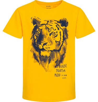 Endo - Piżama z krótkim rękawem dla chłopca, z tygrysem, żółta z granatowymi spodenkami, 9-13 lat C06V005_1 223