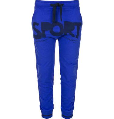 Endo - Spodnie dresowe długie dla chłopca 3-8 lat C91K020_1