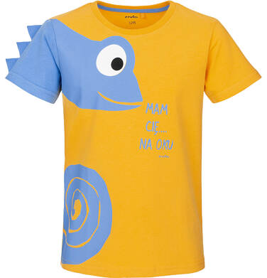 Endo - T-shirt z krótkim rękawem dla chłopca 9-13 lat C91G638_1