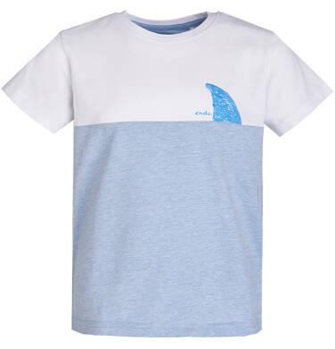 Endo - T-shirt dla chłopca 3-8 lat C81G134_1