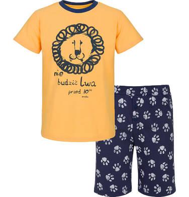Piżama dla chłopca 3-8 lat C91V007_1