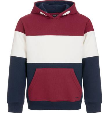 Endo - Bluza z kapturem dla chłopca 3-8 lat C92C002_1