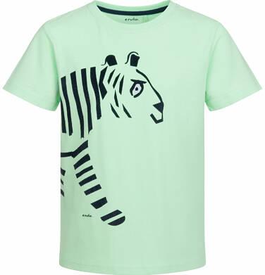 T-shirt z krótkim rękawem dla chłopca, z tygrysem, jasnozielony, 9-13 lat C03G514_2