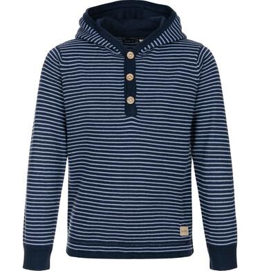 Sweter z kapturem dla chłopca 0-3 lata N82B008_1