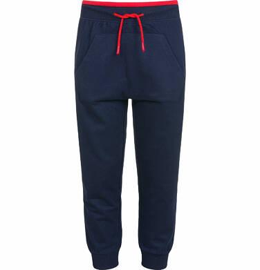 Endo - Spodnie dresowe dla chłopca, z kieszenią kangur, ciemnogranatowe, 2-8 lat C03K023_1