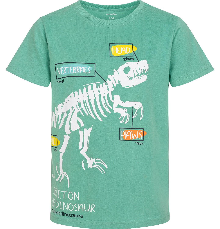 Endo - T-shirt z krótkim rękawem dla chłopca, ze szkieletem dinozaura, zielony, 9-13 lat C06G005_2