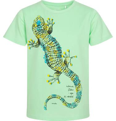 Endo - T-shirt z krótkim rękawem dla chłopca, z jaszczurką, zielony, 9-13 lat C06G083_2 228