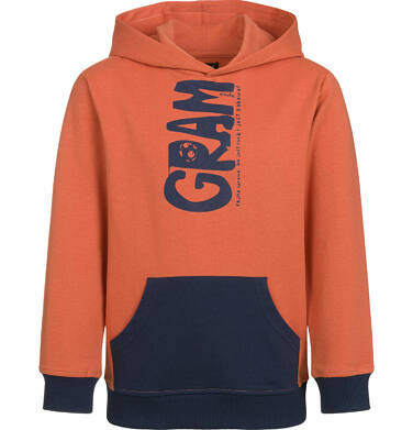 Bluza z kapturem dla chłopca, gram, z kieszenią typu kangur, pomarańczowa, 2-8 lat C03C006_1