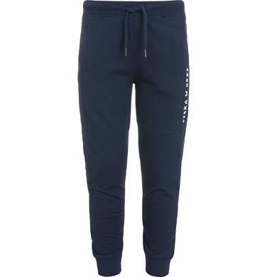 Endo - Spodnie dresowe dla chłopca 3-8 lat C92K012_1