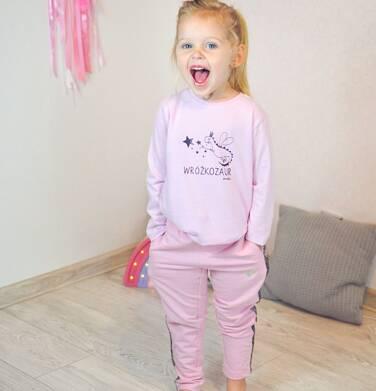 Endo - Bluzka z długim rękawem dla dziewczynki, z wróżkozaurem, 2-8 lat D04G101_1 1