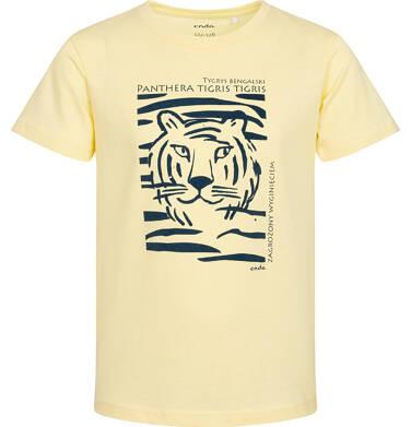 T-shirt z krótkim rękawem dla chłopca, z tygrysem, żółty, 2-8 lat C05G077_1