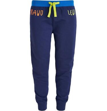 Endo - Spodnie dresowe długie dla chłopca 3-8 lat C81K015_1