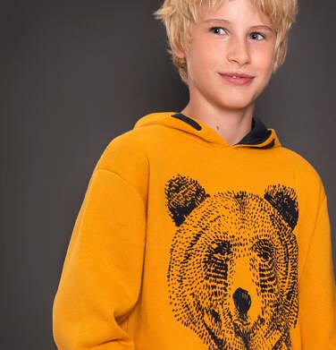 Endo - Bluza z kapturem dla chłopca 3-8 lat C92C023_1