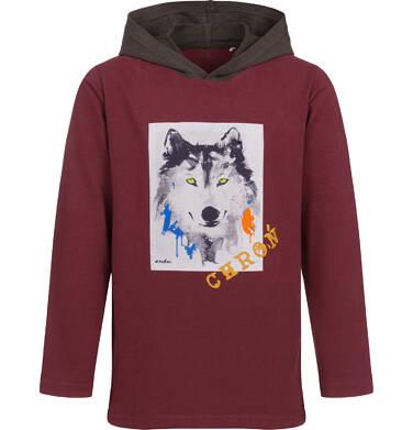 Endo - T-shirt z długim rękawem i kapturem dla chłopca, z wilkiem, 9-13 lat C04G088_2 3