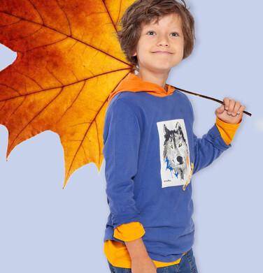 Endo - T-shirt z długim rękawem i kapturem dla chłopca, z wilkiem, 2-8 lat C04G111_1 17