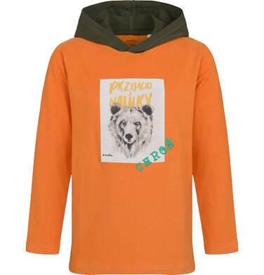 Endo - T-shirt z długim rękawem i kapturem dla chłopca, z niedźwiedziem, 2-8 lat C04G111_2 6